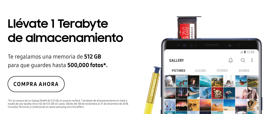 GNote91TB